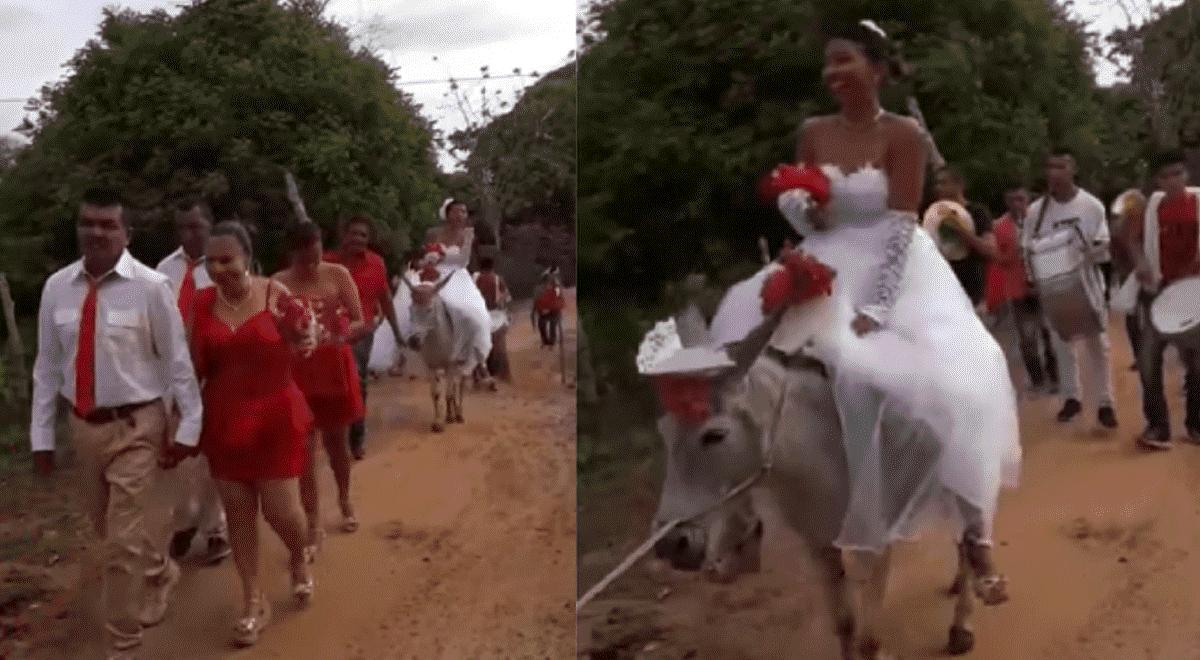 586bfd134 Youtube Viral  novia sorprende al llegar en burro al matrimonio  VIDEO