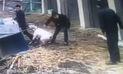 YouTube: perro ataca a caballo y luego a un hombre en China