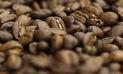 Perú regresa al Foro Mundial del Café