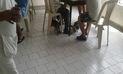 Más de ochenta gatos invaden Hospital Hermilio Valdizán