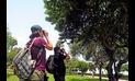 Naturaleza en tu ciudad, un concurso de WWF que impulsó fotografiar la fauna silvestre urbana