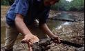 Organizan foro para difundir propuestas indígenas sobre economía y cambios climáticos
