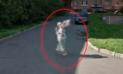 Google Maps: ¿Encontraron un 'angel' en calle de Rusia? [FOTOS]