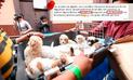 Facebook: denuncian estafa de joven por supuesto sacrificio de perros en San Miguel