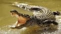 Madre y su bebé salieron a buscar agua pero fueron devorados por cocodrilo