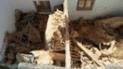 Cusco: Tres miembros de una familia quedan graves al derrumbarse su vivienda