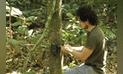 Tras los pasos del jaguar amazónico