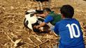 La Libertad: inseminación artificial a ganado vacuno