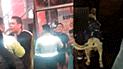 Plaza San Martín: sujeto golpeó salvajemente a perro que permanecía afuera de KFC [VIDEO]