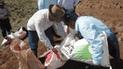 Junín: más de 2000 ganaderos se beneficiaran con siembra de pastos