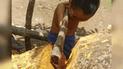 Vía Facebook: un niño sin brazos tala un árbol y sorprende las redes [VIDEO]