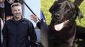 Encontraron a la perra de condenado por violación y salió de la cárcel