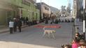 Huancavelica: Despiden e inhabilitan a 17 docentes del distrito de Julcamarca