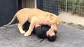 YouTube Viral: No imaginarás la reacción de un león al reencontrarse con su criador [VIDEO]