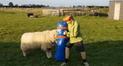 Facebook: un niño y un carnero tienen un divertido entrenamiento de rugby [VIDEO]