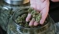 Acciones de compañías dedicadas al cannabis se dispararon hasta en 1.000%  en dos meses