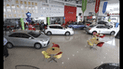 OLX: Mitos y verdades de comprar un auto por internet
