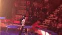 YouTube: tigre convulsiona en show y actitud de domador indigna a la red [VIDEO]