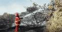 Controlan en 80% incendio que afecta el Santuario Histórico Bosque de Pómac