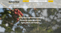 Lanzan clases online para el sector cafetero y cacaotero en temas de agricultura sostenible