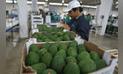 Agroexportaciones peruanas crecieron 16% entre enero y agosto de 2018