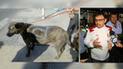 """Arequipa: Atacan a perro """"Scooby"""" y pintan con aerosol símbolo de agrupación política"""