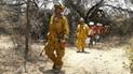 Lambayeque: incendio forestal destruyó 220 hectáreas del Bosque de Pómac