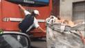 Facebook: recolector se trepa a bus para llegar a su destino sin imaginar que todo terminaría fatal [VIDEO]