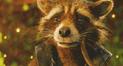 Facebook: filtran insólita imagen de Rocket Raccoon luego de perder a Groot en Infinity War [VIDEO]