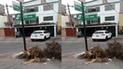 #YoDenuncio: desmonte arrojado en esquina de urbanización no es recogido