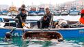 Tumbes: realizarán limpieza de fondo de mar en pro de la pesca artesanal