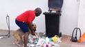 Facebook: perro bota tacho de basura de su casa y su dueño le da un ejemplar castigo [VIDEO]