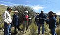 Cusco debe reforestar 2 millones de hectáreas