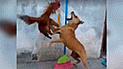 Facebook Viral: No creerás cual fue el insólito truco que usó este perro para defenderse de ataque de gallo [VIDEO]