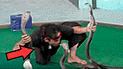 YouTube viral: hipnotizadores de cobras dejan en shock a miles tras presentación nunca antes vista [VIDEO]