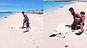 Facebook:  animal gigante es encontrado enterrado y unos hombres ayudan a salvarlo [VIDEO]
