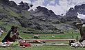 Proyectarán gratis aclamada película Wiñaypacha en Arequipa [VIDEO]