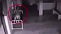 YouTube viral: revisan cámaras de morgue y descubren aterrador film de muerto que pierde su espíritu [VIDEO]