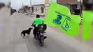 Tumbes: candidato arrolla a perro en recorrido proselitista [VIDEO]