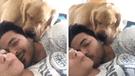 Facebook: quiso besar a su novia, pero su perro celoso tuvo extraña reacción