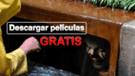 Páginas para descargar películas completas en inglés y español de manera segura y legal