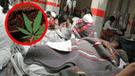 Cusco: Universitarios comieron torta de marihuana, pero lo peor vino después