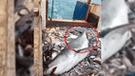 Facebook viral: pescadores sorprenden con lo que hicieron tras capturar a tiburón [VIDEO]