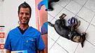 """Pancho Cavero: """"los veterinarios trabajan porque tienen hijos y necesitan alimentarse"""""""
