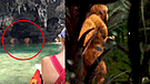 YouTube: Supuestos duendes son captados durante extraño ritual en Tailandia
