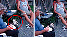 Facebook: Extraña ave aparece de la nada y le pide un trozo de carne a un anciano