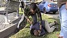 San Isidro: transeúntes atrapan y golpean a ladrón [VIDEO]
