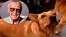 Facebook: Imagen de Stan Lee junto a 'Gringo' en el cielo, hace llorar a miles [FOTO]