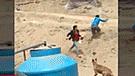 Video muestra el impactante enfrentamiento entre delincuentes y la PNP [VIDEO]