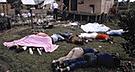 A 40 años de la Masacre de Jonestown, el mayor suicidio colectivo de la historia